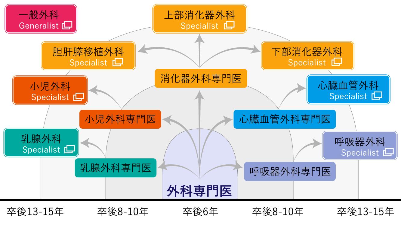 外科医ロードマップ